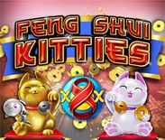 Feng Shui Kitties